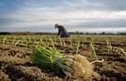 В Раде придумали новый налог для мелких фермеров
