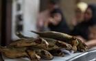 В Украине за полгода 40 человек заболели ботулизмом