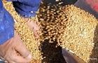 Торгівля агропродукцією України з ЄС впала на 5%