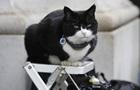 Кіт британського МЗС пішов на пенсію