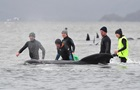 В Австралії на мілині застрягли сотні китів