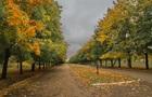 Синоптики дали прогноз погоды на октябрь