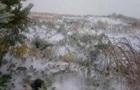 Підсумки 27.09: Перший сніг і звернення  слуги