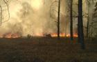 У Краматорську згоріли гектари ландшафтного парку