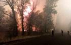 Пожары на Луганщине: три человека погибли