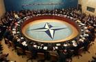 НАТО створить  гарячу  лінію між Грецією і Туреччиною