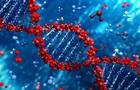 Стародавні гени людини забезпечать захист від раку - вчені