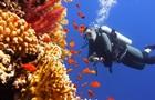 В Австралії створюють Ноїв Ковчег живих коралів