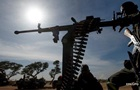 В Нигерии силовики ликвидировали более 80 членов банд