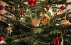 У Держлісагентстві підрахували вартість новорічних ялинок