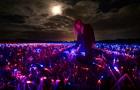 Голландский художник превратил луковое поле в инсталляцию
