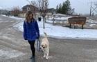 В Канаде фиксируют случаи передозировки наркотиками у собак