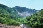 Ліси Амазонії незаконно продають на Facebook