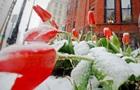 Синоптики рассказали о погоде в начале весны