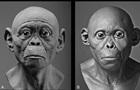 Ученые воссоздали облик древних предков человека