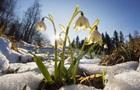 Погода на тиждень: прохолодно і мокрий сніг