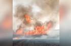 На Луганщине прокатилась серия поджогов сухостоя