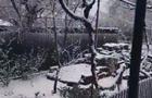 Одесскую область засыпало снегом