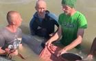Полицейские с отдыхающими спасли дельфина