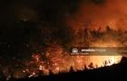 Власти Турции назвали лесные пожары  национальным бедствием