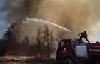 Пожары в Турции: террористы взяли ответственность