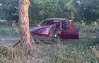 В Николаевской области случилось смертельное ДТП