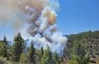 Аномальная жара добралась до Израиля: вспыхнули пожары