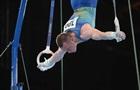 Радивилов: Спортсмены не должны так готовиться к главному старту четырехлетия