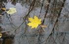 В Україну прийшла метеорологічна осінь