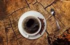 В Финляндии вырастили кофе в пробирке