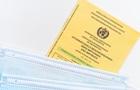 Шмыгаль рассказал о наказании за подделку COVID-документов