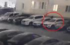 На Киевщине задержали угонщиков элитных авто