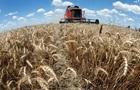 Украина резко увеличит экспорт пшеницы
