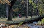 У Чехії ураган залишив без світла 300 тисяч будинків