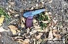 Житель Дніпропетровщини поранив двох людей і зник на їхньому авто