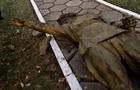 На Полтавщині знесли пам ятник Чапаєву
