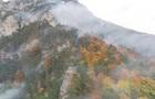 В австрійських Альпах вирує масштабна лісова пожежа