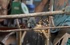У Євросоюзі планують заборонити експорт металобрухту
