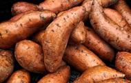 Сладкий картофель, хурма, патиссон. Чем полезны сезонные фрукты и овощи