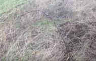 Под Одессой обнаружили трубопроводы для контрабанды спирта