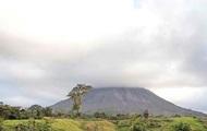В Коста-Рике разбился самолет: погибли 12 человек