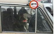 В Киеве собака второй день сидит в закрытой машине