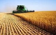 На украинский аграрный рынок заходит британская компания