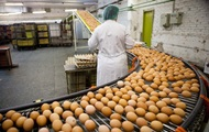 Украина вошла в топ-10 производителей яиц в мире