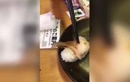 Живого моллюска в суши сняли на видео