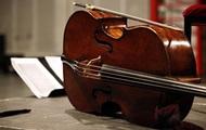 Во Франции похитили виолончель стоимостью 1,3 млн евро
