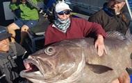 В Австралии пожилая женщина поймала рыбу-гиганта