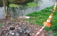 На Буковине на берегу реки нашли пакет с телом младенца