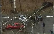 На Москву обрушился ураган, есть жертвы