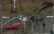 Ураган в Москве: возросло число жертв